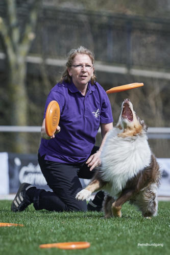 Frisbee Dog 13