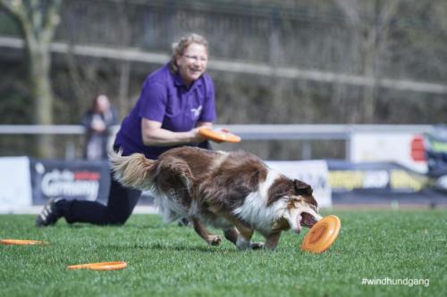 Frisbee Dog 14