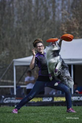 Frisbee Dog 22