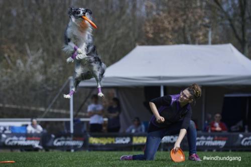 Frisbee Dog 25
