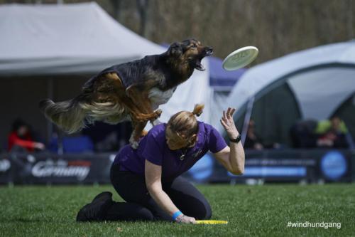 Frisbee Dog 31