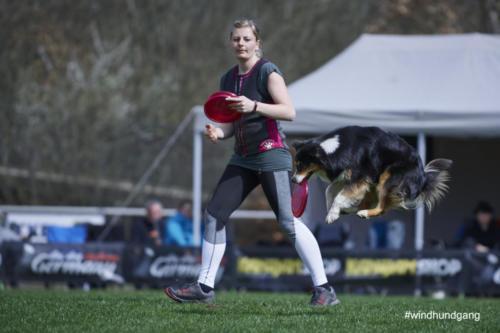 Frisbee Dog 32
