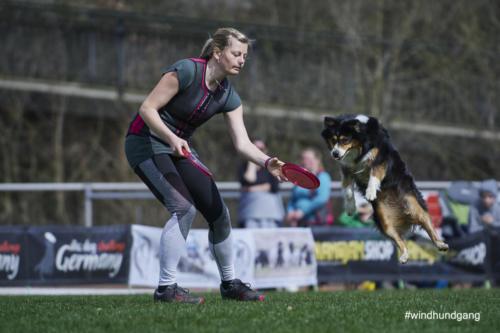 Frisbee Dog 33