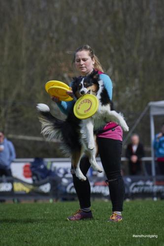 Frisbee Dog 6